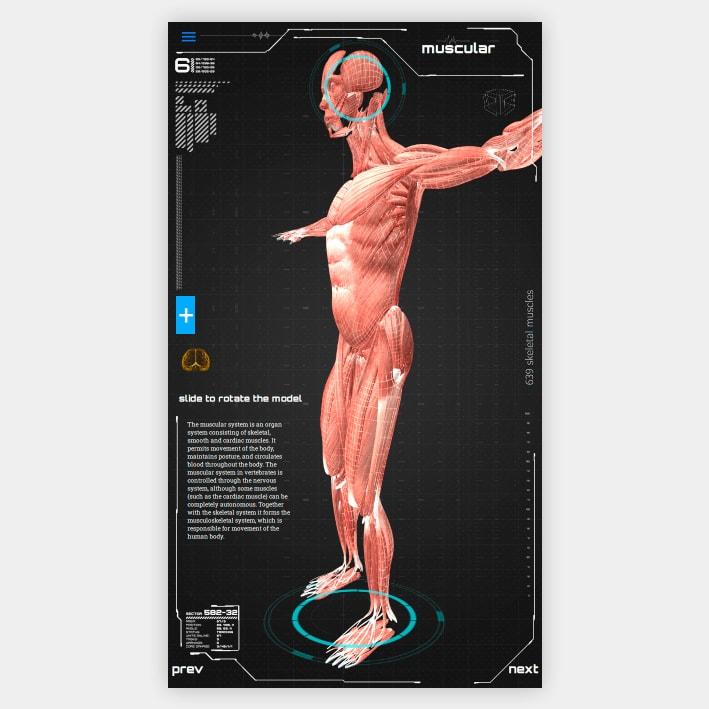 Anatomy Model App